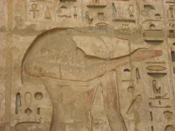 Image of Thoth, Hatshepsut Temple, Egypt. Nov 2008